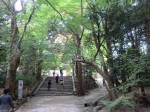 お気に入りの散歩コース 2014-09 7