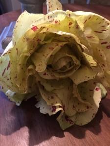 おしゃれなイタリア野菜  2016-05 4