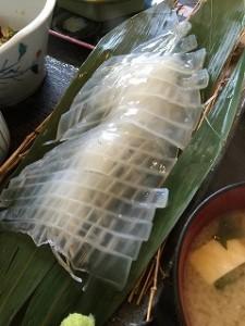 男命イカ 2016-09 1