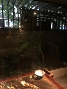 台北 お茶屋さん巡り 2018-05-13